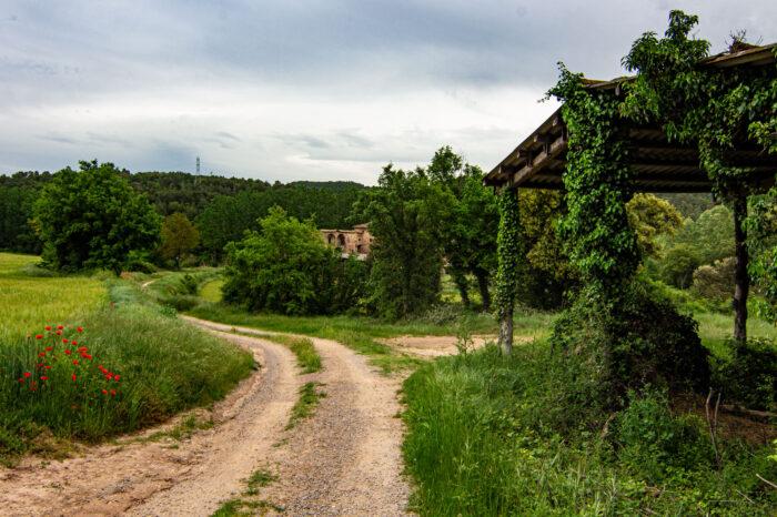 Itinerari Mercè Pecanins