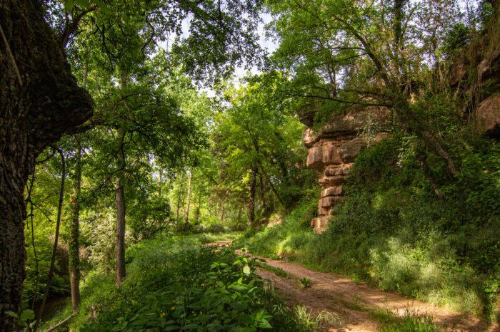Itinerari dels Nyerros i Cadells