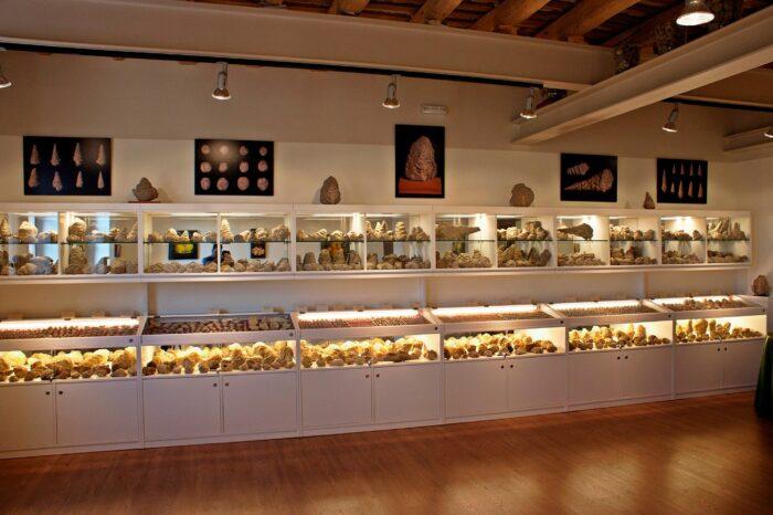 Museu de Fòssils
