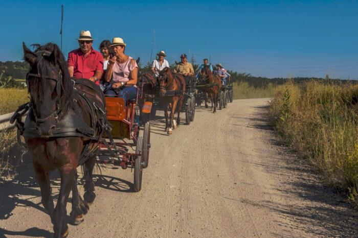 Ruta Prats amb carruatge