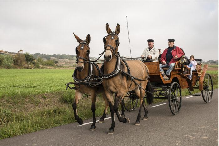Ruta Olost amb carruatge