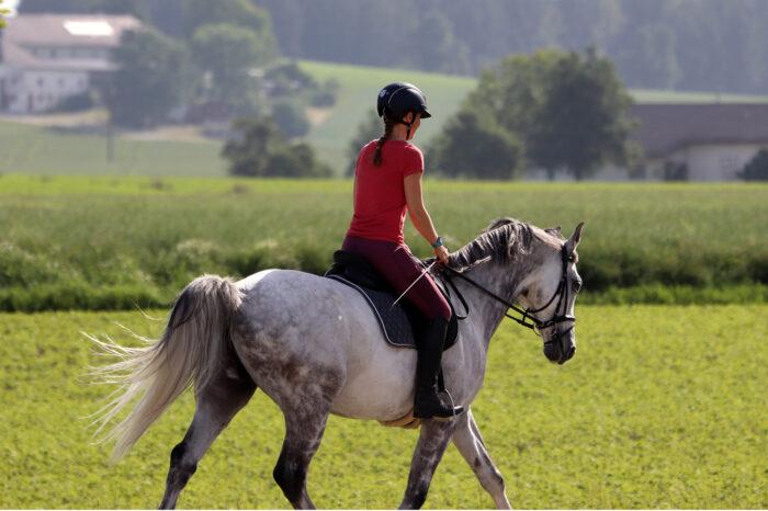 Ruta Prats amb cavall